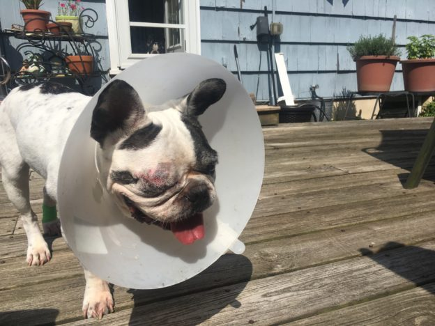 after surgery one eye removed.